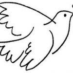 Bandeirantes da Paz